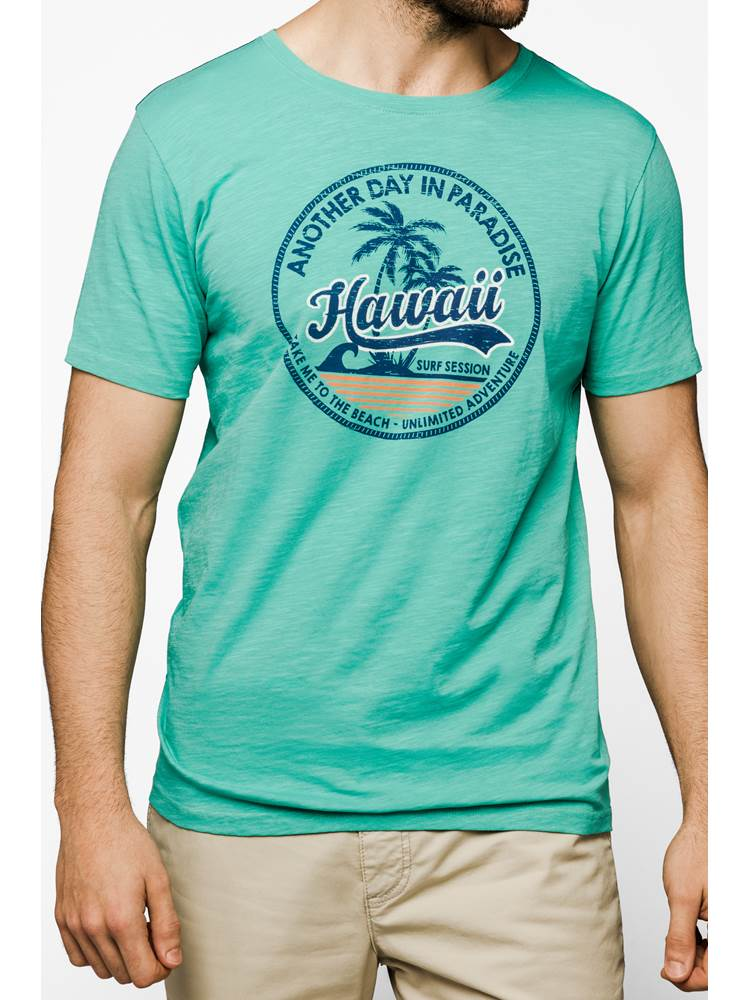 Hawaii T-skjorte 7237742_GS8-REDFORD-H19-Modell-front_22955.jpg_Front||Front